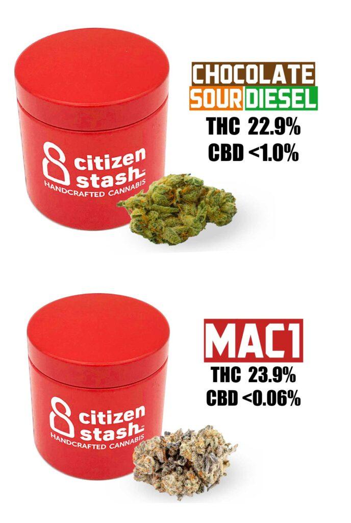citizen stash MAC1